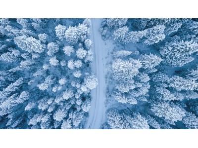 Winter Scene Canvas Print Ideas