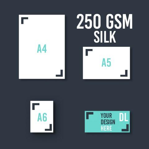 DL Leaflet 250 GSM Silk