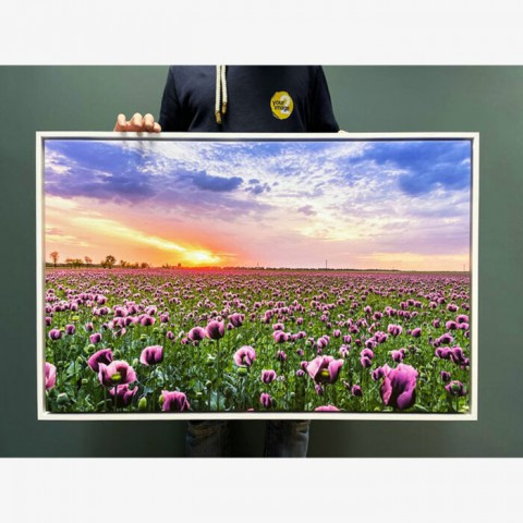 Spring Sunset Box Frame Canvas