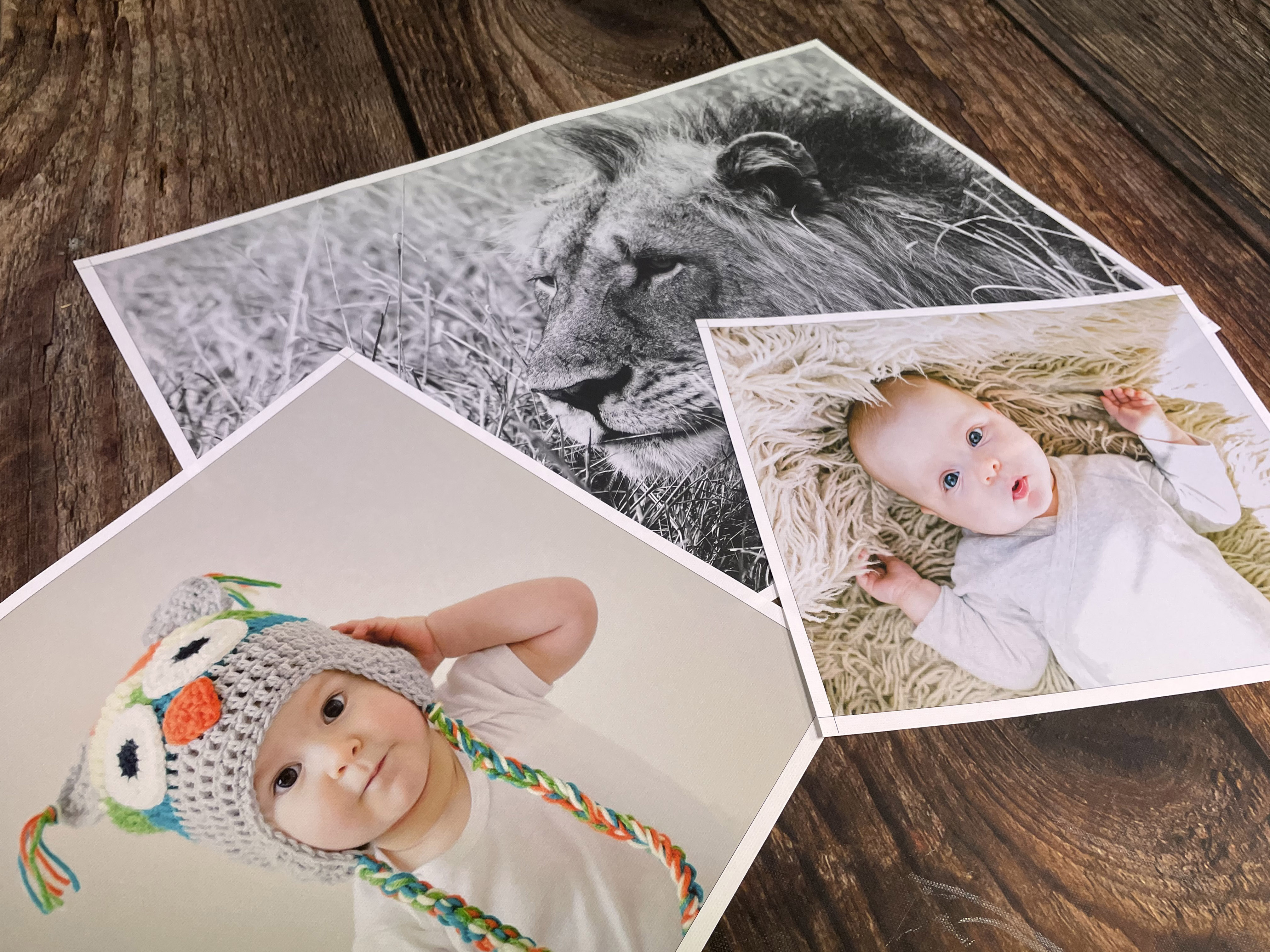 Nursery wall art can be a great place to use family photos, new born baby images or animals printed on poster print!