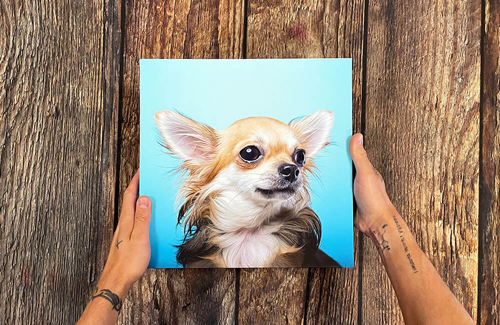 Your canvas photo delivered next day with out next day canvas delivery to create your own canvas wall art feature in your home